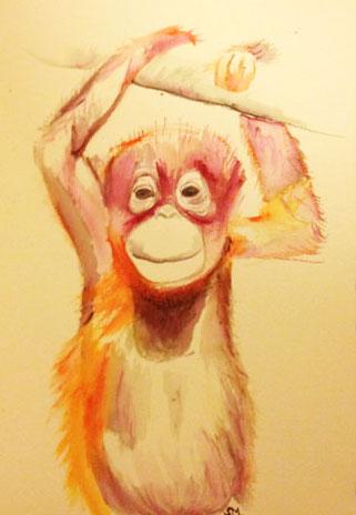 Orangutan bubba